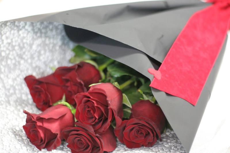 San Valentín Pasión